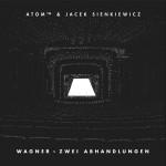 sienkiewicz_atom